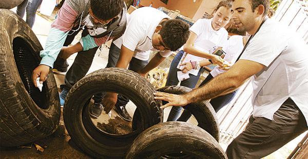 250 estudiantes salen a destruir criaderos de mosquitos